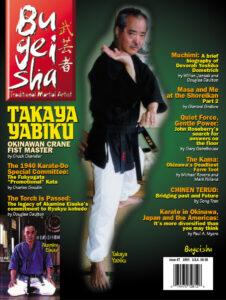 Issue #7 bring 1999 (BONUS)